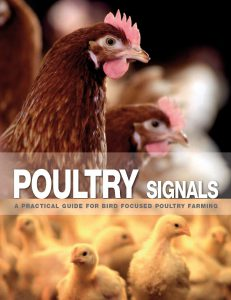 About Poultry Signals 6